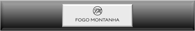 Foggo Montanha insert stove fireplace